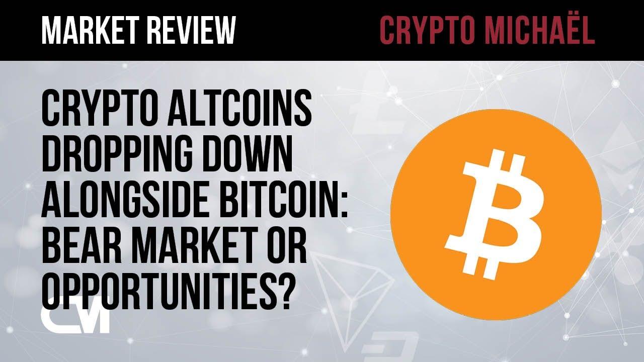 Crypto altcoins dalen samen met Bitcoin bearmarkt of kansen